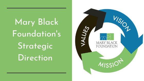 Mary Black Foundation's Strategic Direction