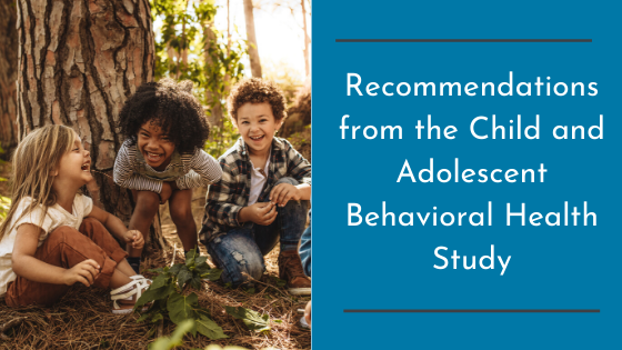 Recommendations from the Child and Adolescent Behavioral Health Study
