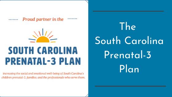 The South Carolina Prenatal-3 Plan